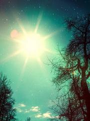 cum-poti-sa-beneficiezi-de-legatura-magica-dintre-natura-si-Univers-180