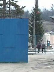 penitenciar_colibasi